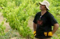 L-R: Out in the vineyards at Domaine Matassa, with Tom Lubbe facing the camera; 1978 Château Rayas