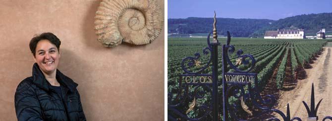Anne Gros Celebrates Burgundy's Warmer Vintages   Wine-Searcher News & Features