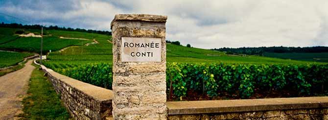 """""""We make wines from terroirs that have been dedicated to the production of great things for centuries."""""""
