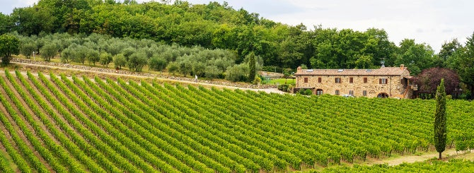 The vineyards of Castellina are now officially unique in Chianti Classico.