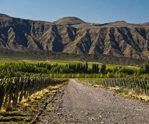 San Juan Wine Regions